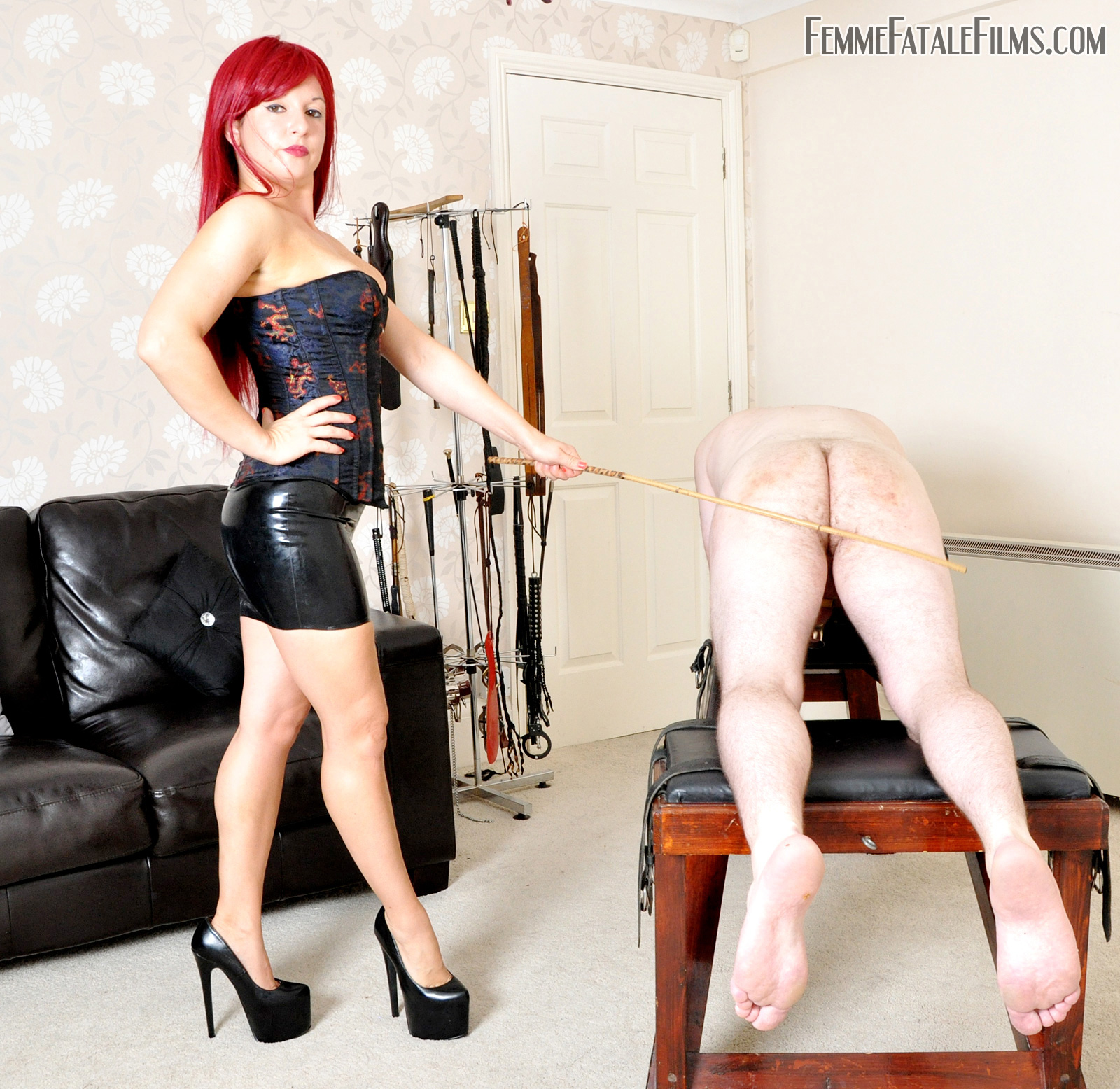 I will do anything for you sexy joi joe with assplay - 1 1